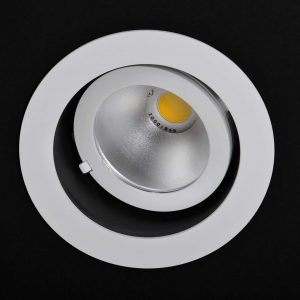 Scoop Downlight