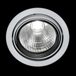 MAXI Gimbal Downlight